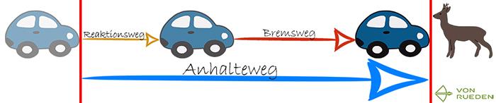 Anhalteweg berechnen: Anhalteweg = Reaktionsweg + Bremsweg